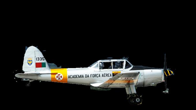 Chipmunk MK 20 (modif.)